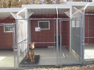 TSVZ Mittelzeile neu Zwinger mit Hund