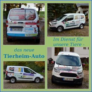 fb-11-tierheim-auto